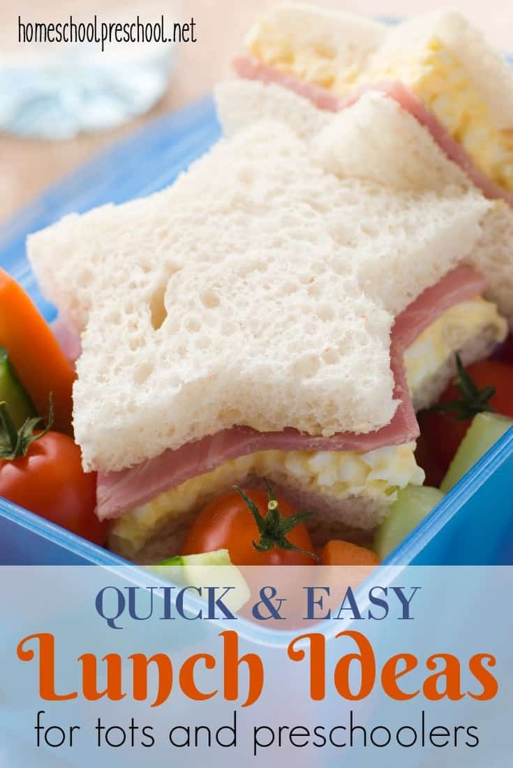Ditch the pb&j, and add some fun to your mealtime with these quick and easy lunch ideas your toddlers and preschoolers are going to love!