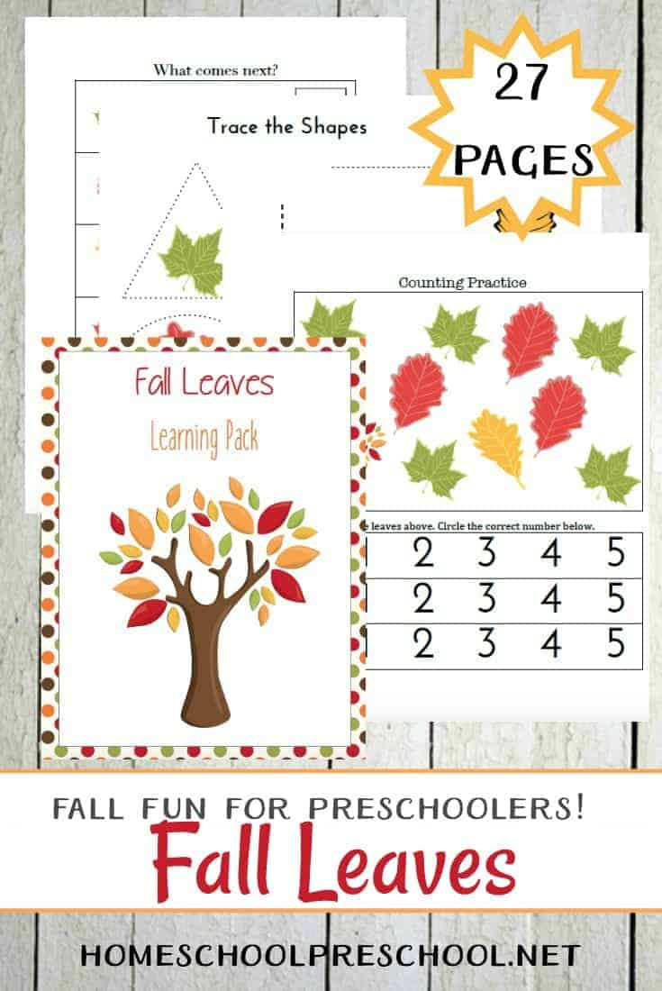 Check out some really fun fall leaves preschool activities you can incorporate into your upcoming autumn homeschool preschool lessons.