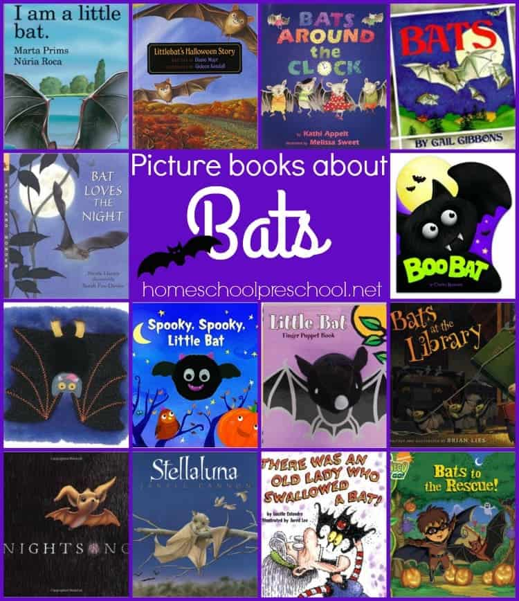 Some really great books about bats for toddlers through elementary. | homeschoolpreschool.net