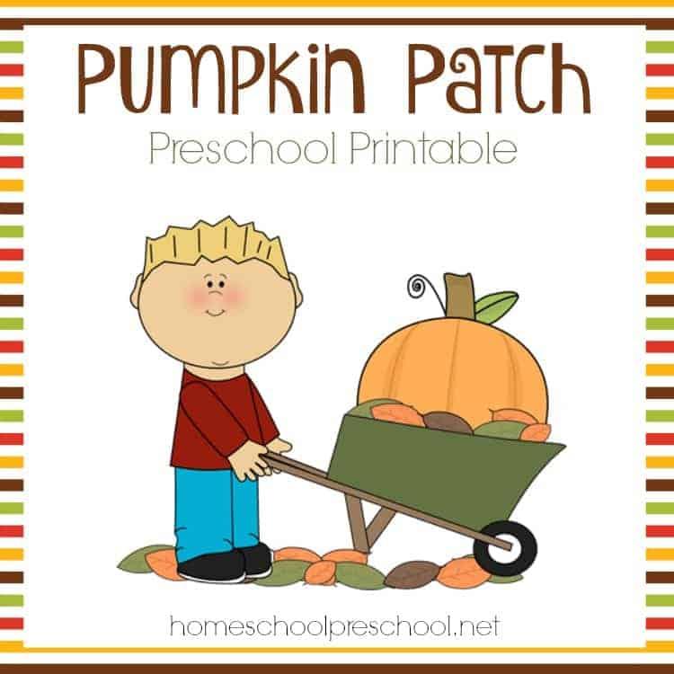 Pumpkin Patch Submit