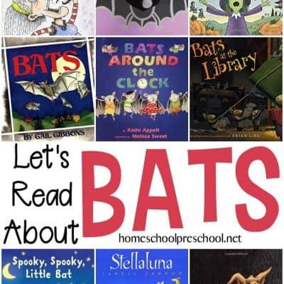 Books About Bats for Preschoolers