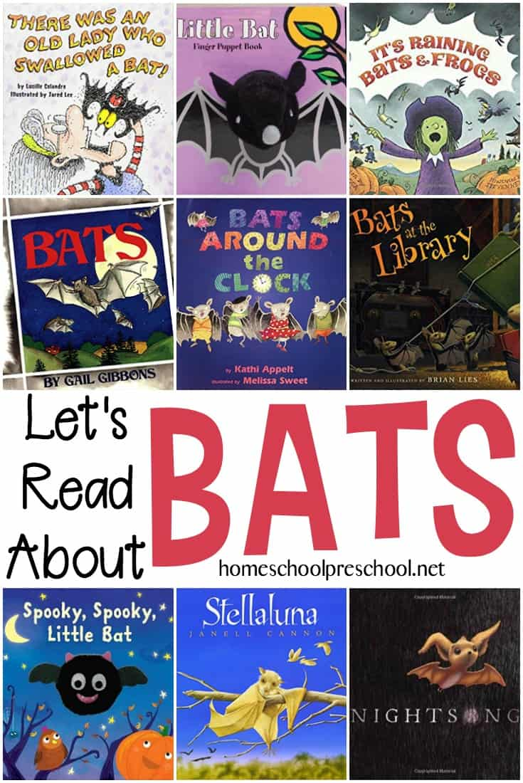 Books About Bats for Preschoolers
