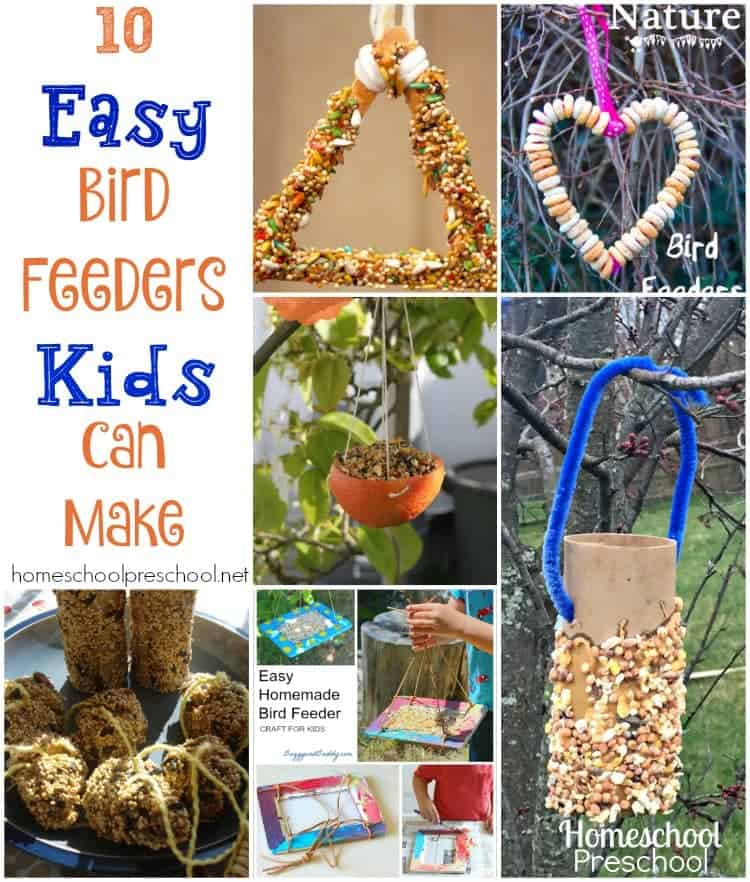Now that spring is just around the corner, the leaves are budding on our backyard trees. This means we are beginning to get more and more backyard visitors. We like to entice them to visit by keeping our bird feeders stocked with bird seed all spring.   homeschoolpreschool.net