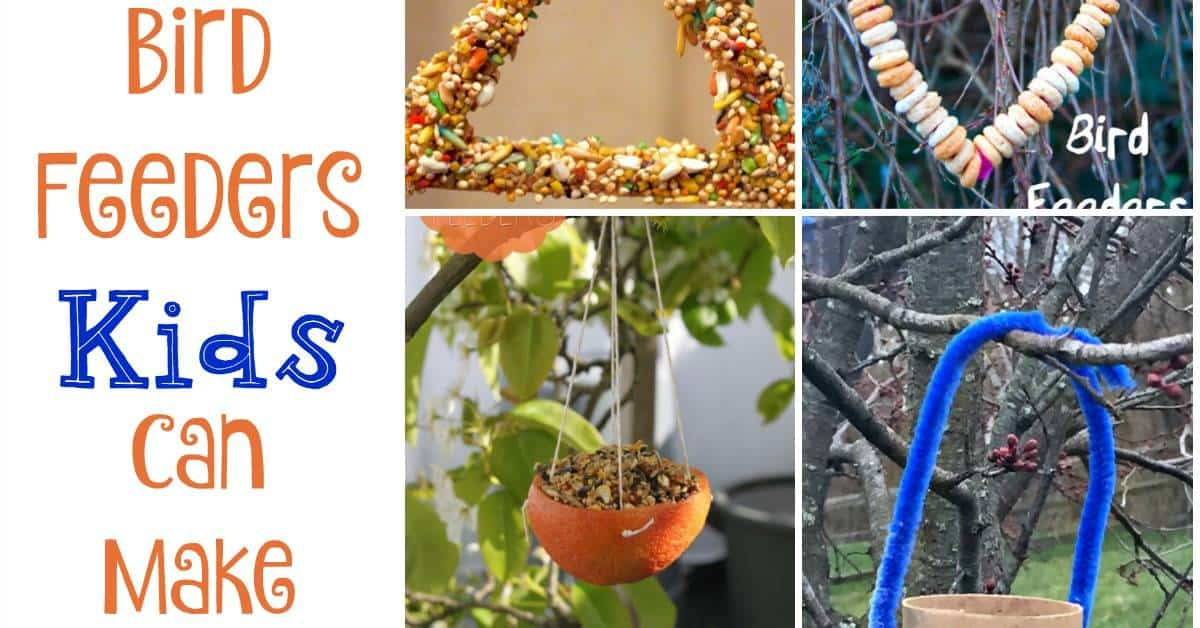 10 Easy Bird Feeders Preschoolers Can Make