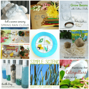38 Preschool Science Experiments for Spring