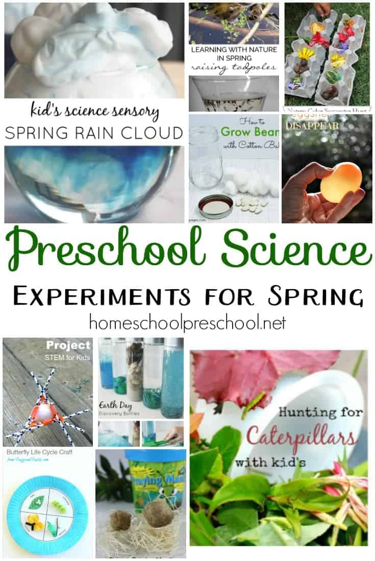 Take advantage of all the new that spring has to offer, and try as many of these preschool science experiments as you can! | homeschoolpreschool.net