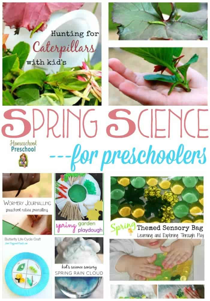 Spring is an amazing season full of new things to discover. Explore seeds, butterflies, weather, and more with your preschoolers. This list of 38 spring science activities for preschoolers is a great place to start! | homeschoolpreschool.net