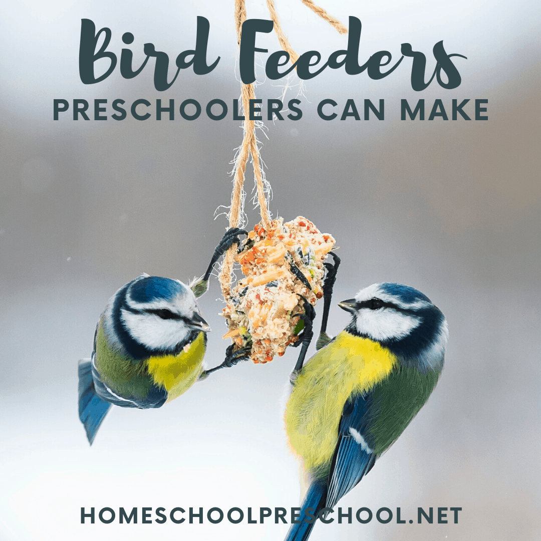 Discover a variety of simple bird feeders for preschoolers to make and hang in the trees. They'll love watching the birds flock to the yard.
