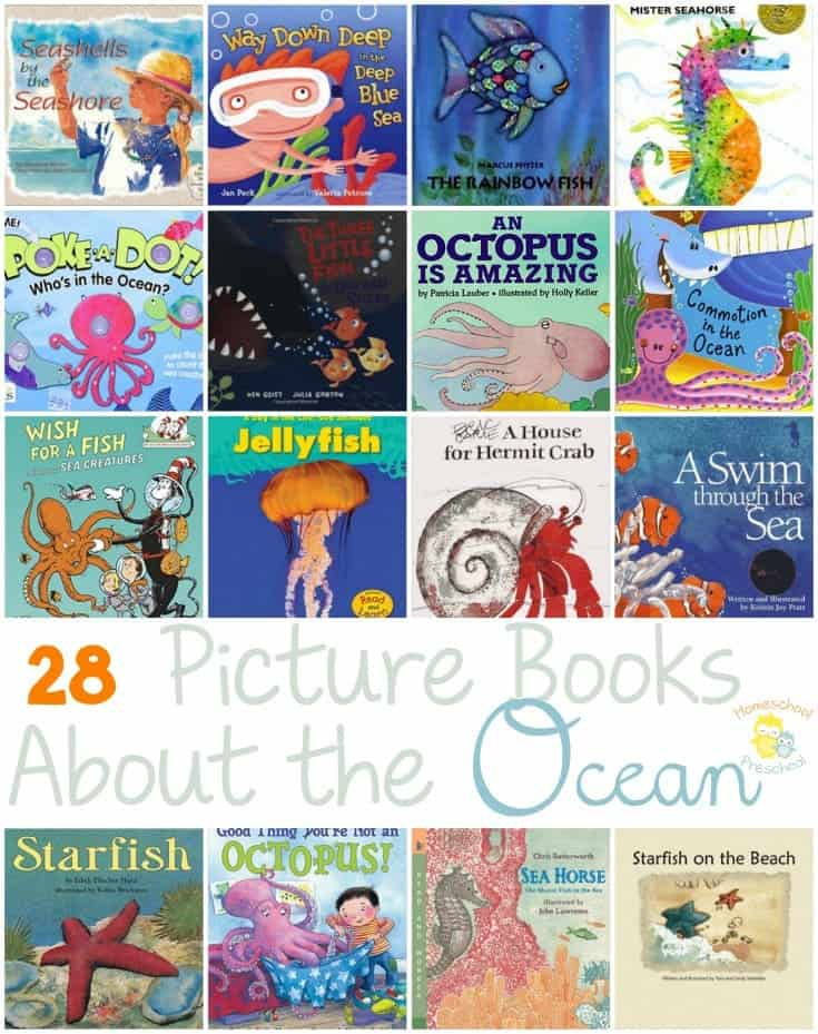 preschool books about the ocean 28 books about the 606