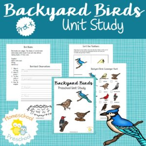 All the beautiful birds in my backyard inspired me to make a Backyard Birds unit study perfect for your preschoolers! Don't miss these hands-on activities, books, and free printables! | homeschoolpreschool.net
