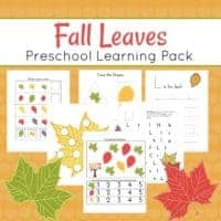 Fall Leaves Preschool Printables and Activities