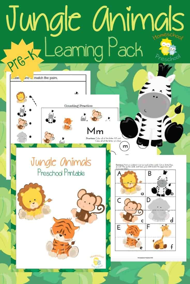 Preschoolers love animals! Teach or reinforce preschool skills with this fun jungle animal-themed preschool pack! | homeschoolpreschool.net
