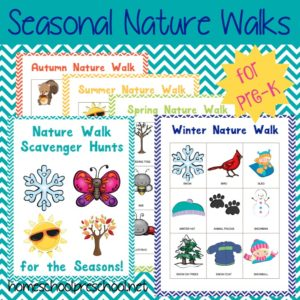 How to Prepare for a Preschool Nature Walk