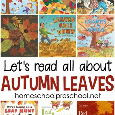 Best Picture Books About Leaves for Preschool