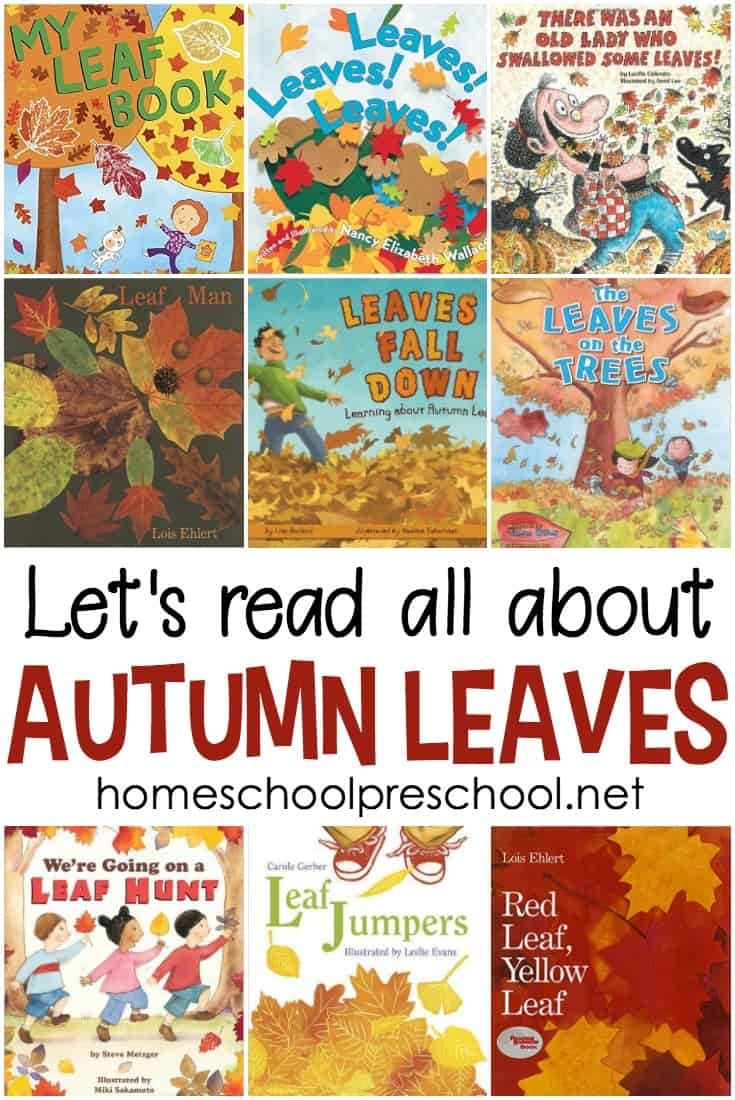 Come discover some of our very favorite picture books about leaves for preschool. Fiction and nonfiction books for beginning readers!