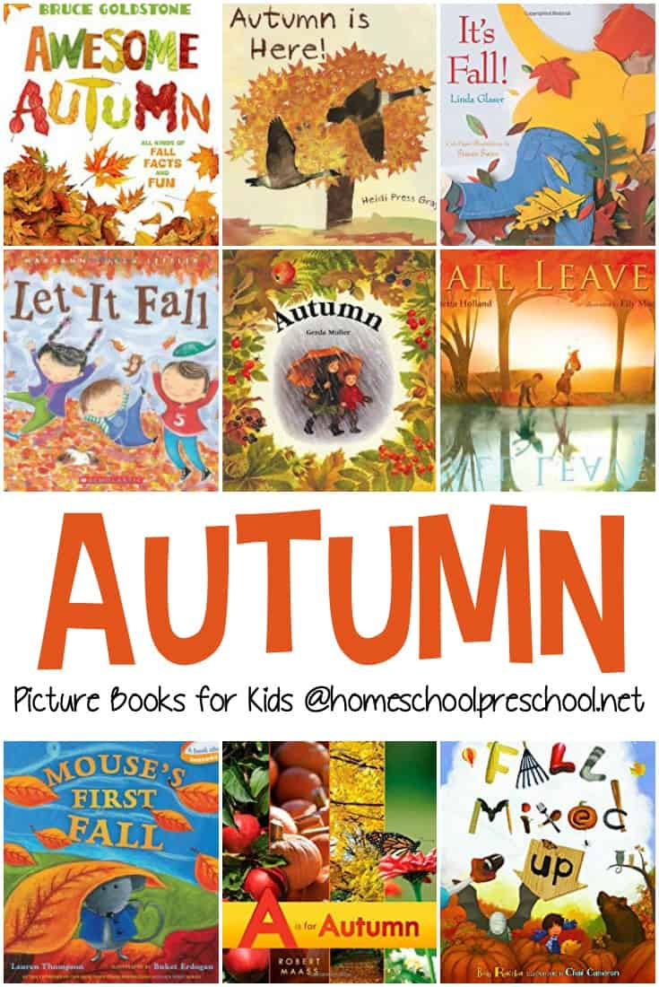 As we near the end of summer, fill your book basket with some of our favorite fall books for preschoolers. It's filled with both fiction and nonfiction selections.