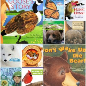 Our Favorite Books About Hibernation and Migration (with Printable List)