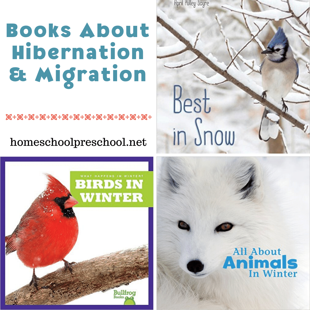 Winter is a great time to add books about hibernation and migration to your reading time. Here's a great list of picture books to get you started!