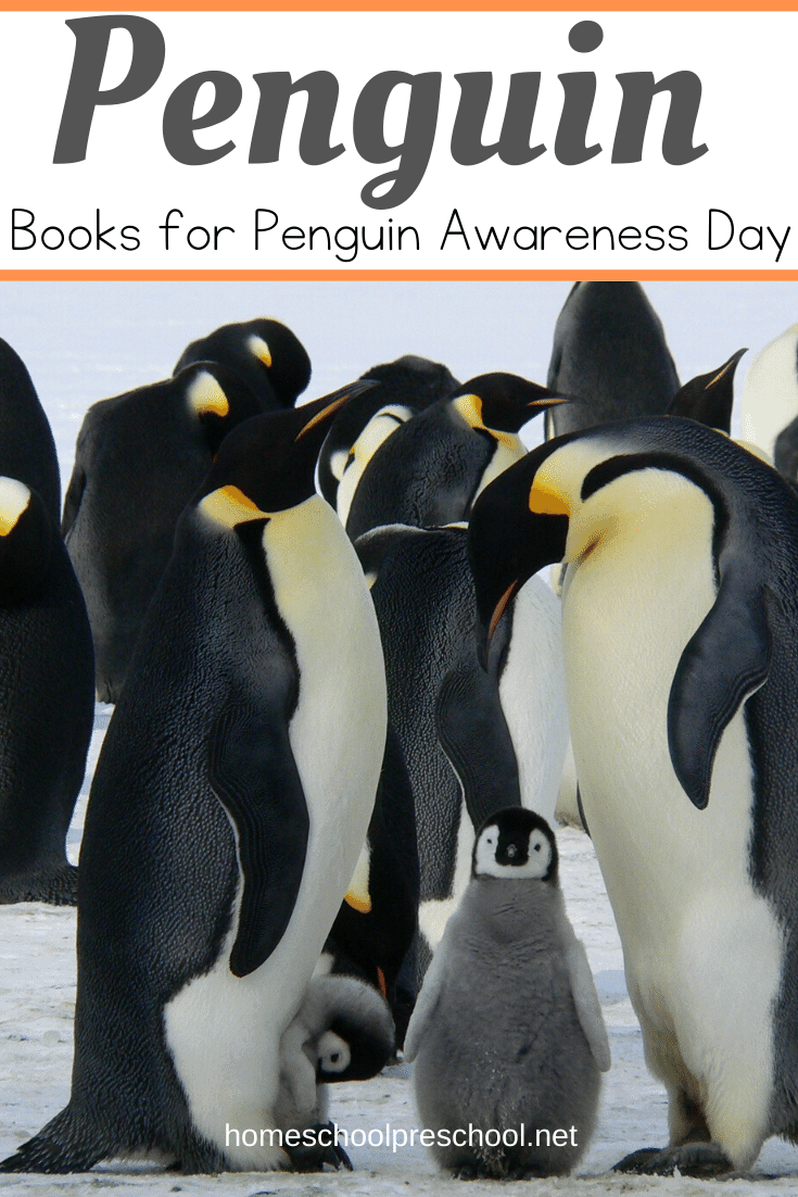 Preschoolers love penguins! Here are five amazing penguin books to read as you celebrate Penguin Awareness Day on January 20!