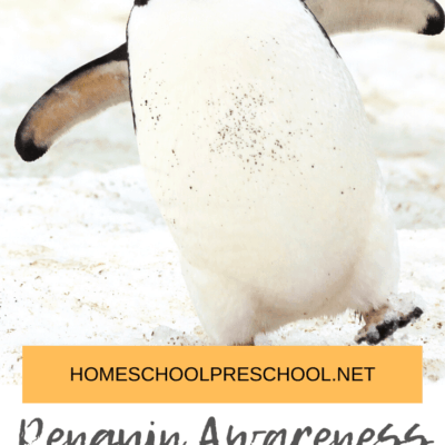Books to Read for Penguin Awareness Day