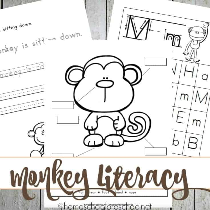 "Your preschoolers will have so much fun working on their literacy skills with the printable activity pages below. They include: a letter ""S"" hunt, easy reader story, handwriting practice, a color and trace page, and more."