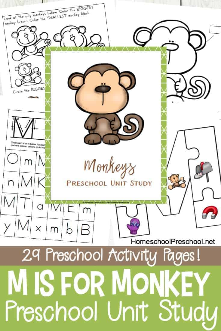 Are you focusing on the letter M or studying monkeys and zoo animals with your preschoolers? This set of M is for Monkey printables make a great addition to your lesson plans.