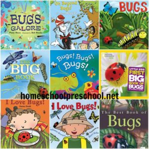 10 of Our Favorite Childrens Books About Bugs