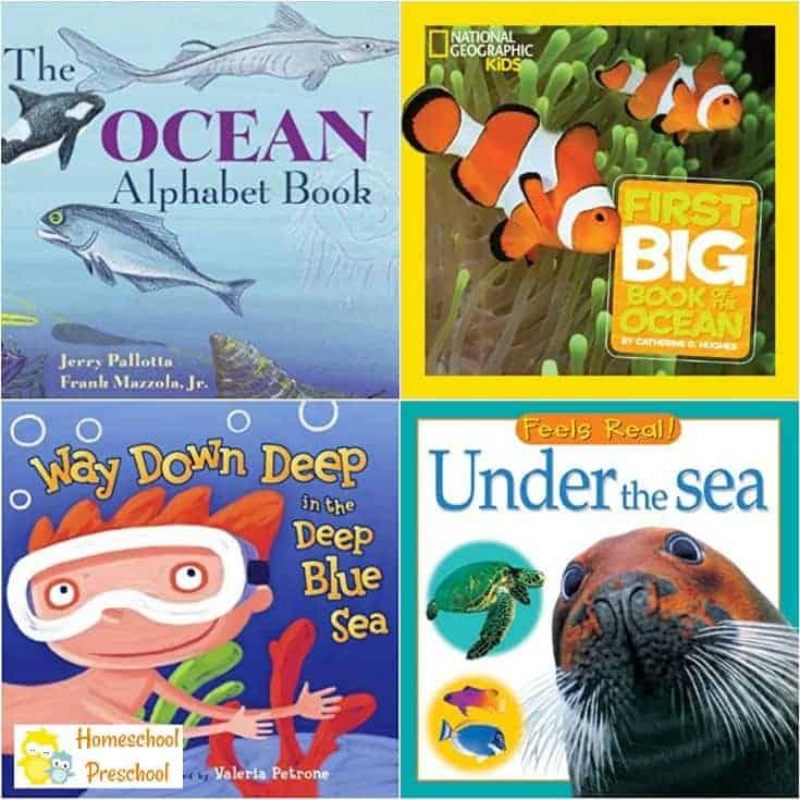 27 Amazing Ocean Animal Books for Preschoolers
