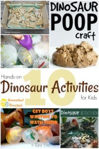 These hands-on dinosaur activities are perfect for young dinosaur lovers! I bet your kids will love them all!