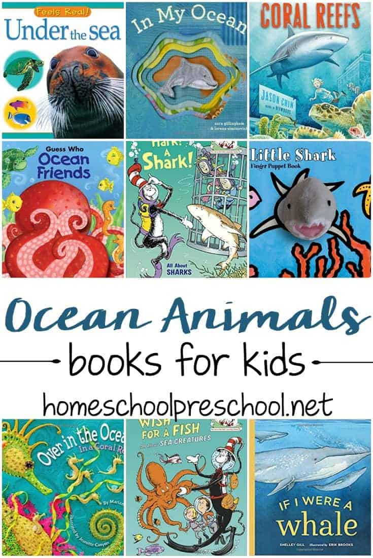 I love this collection of 27 amazing ocean animal books for preschoolers! These are great for young readers who are learning about animals and the ocean!