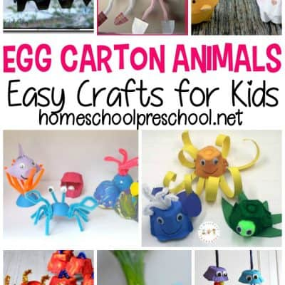 Egg Carton Animals Kids Can Make