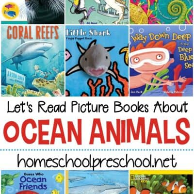 Ocean Animal Books for Preschoolers