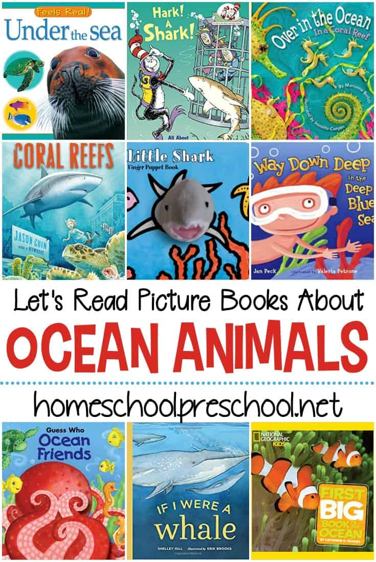 Fill your book basket with ocean animal books for preschoolers. They will help you introduce your little ones to the ocean and the animals that live in it.