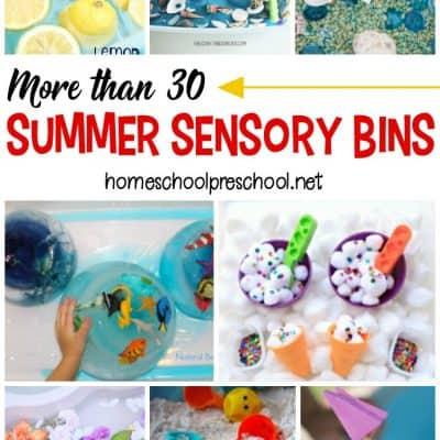 More Than 30 Summer Sensory Bins for Preschoolers