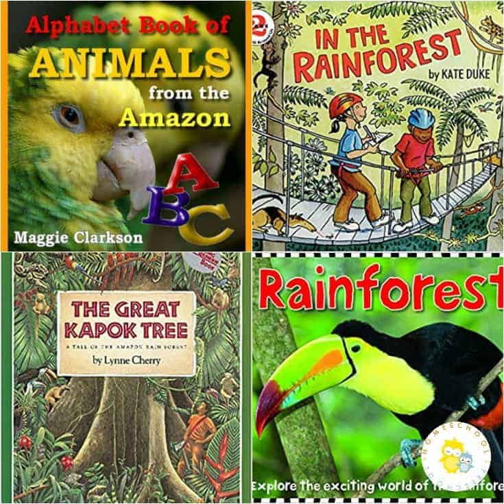 If you've got a child who loves animals or the rainforest, encourage them to learn about rainforest animals with this great collection of picture books.