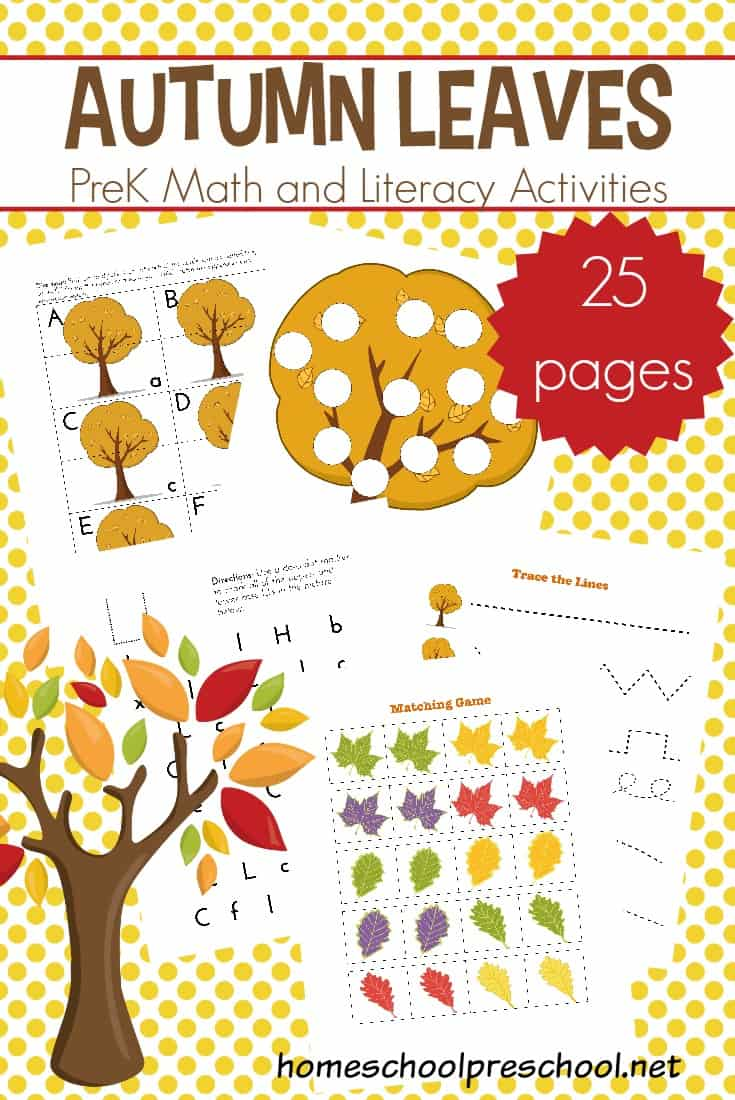 Add these preschool leaf theme math and literacy printables to your autumn plans. Focus on the alphabet, numbers, and fine motor skills!