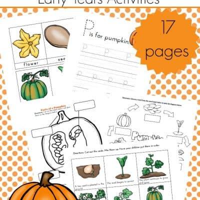 Preschool Life Cycle of a Pumpkin Printable Pack