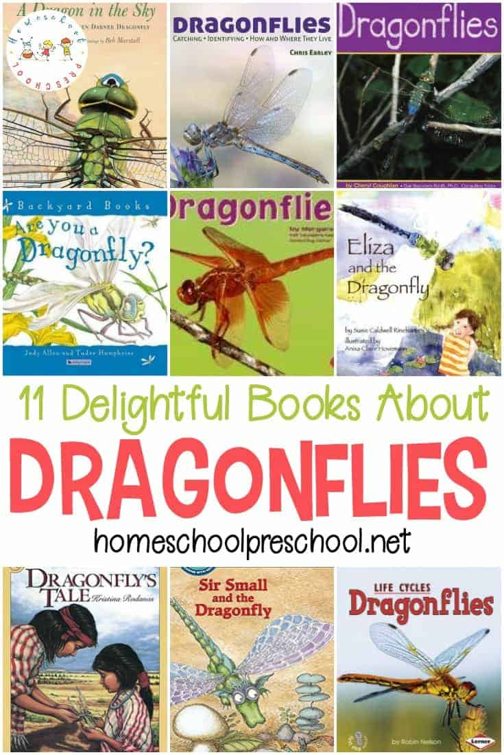 Why study butterflies and grasshoppers like everyone else? Here are some great books about dragonflies to help you study a brand new insect.