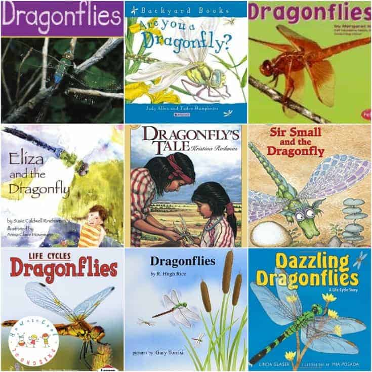 11 Amazing and Fabulous Books about Dragonflies