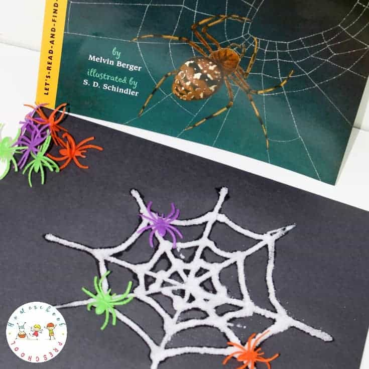 Discover a great nonfiction spider book for kids, a fun salt painting craft, and a spider-themed math printable! Perfect for your October homeschool preschool.