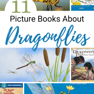 Books about Dragonflies