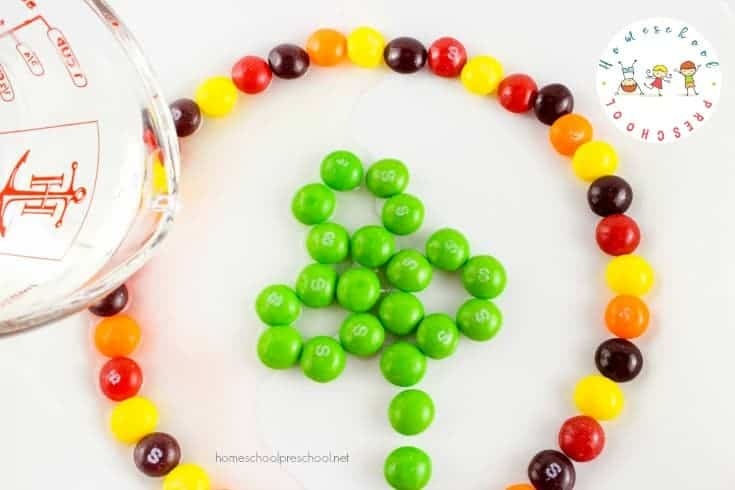 I love being able to incorporate the holidays into our homeschool lessons. This easy candy science project is perfect for St. Patrick's Day!