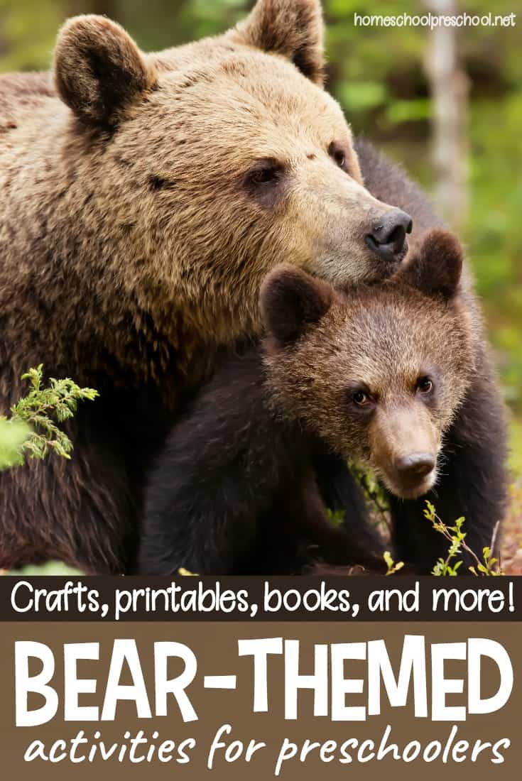 What an amazing collection of bear activities for kids! It contains crafts, printables, books, and more! You'll find everything you need to keep your kids engaged and learning all about bears!