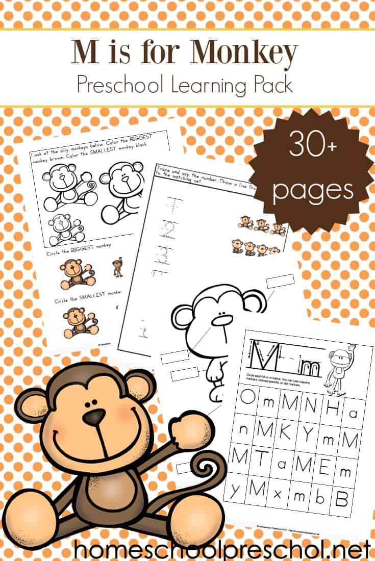 Focusing on the letter M or studying monkeys and zoo animals? This set of printable preschool monkey activities makes a great addition to your theme.