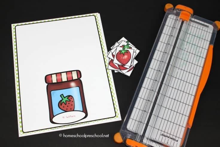 Are you looking for a fun resource to teach pre-primer sight words to your preschool and kindergarten students? This hands-on beginning sight words sorting activity is just what you need!