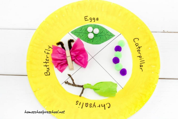 It's spring! It's a great time to learn about the life cycle of a butterfly. This spring craft for kids will help kids visualize the butterfly life cycle.