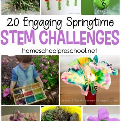 20 Springtime STEM Activities for Kids