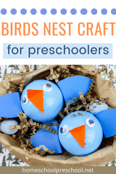 Children of all ages will enjoy making this adorable baby birds nest craft! It's a great addition to your spring lessons or your bird unit study.