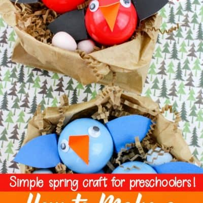 How to Make a Baby Birds Nest Craft