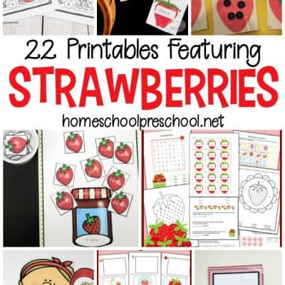 22 Strawberry Printable Worksheets for Preschoolers
